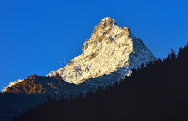 在山的山顶 免版税库存图片