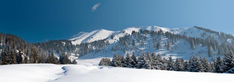 在山的斯诺伊冬天 免版税库存图片