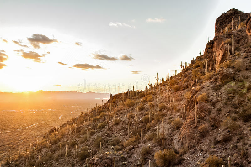 在山的日落在图森AZ美国 免版税库存图片