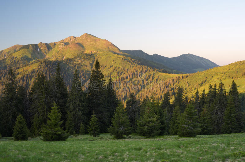 Download 在山的早晨横向 库存图片. 图片 包括有 夏天, 夜间, 背包, 日落, 生态, 旅行, 庄严, 小山, 阳光 - 72369879