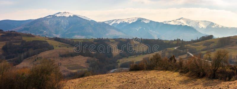 在山的早期的春天 库存图片