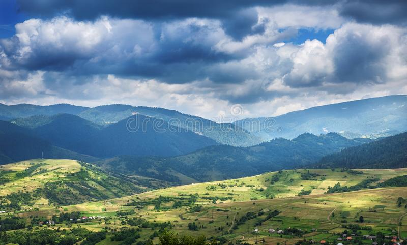 在山的树 喀尔巴阡山脉,欧洲 免版税库存图片