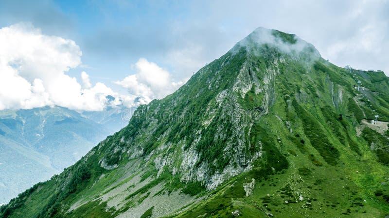 在山的田园诗夏天风景 免版税库存图片