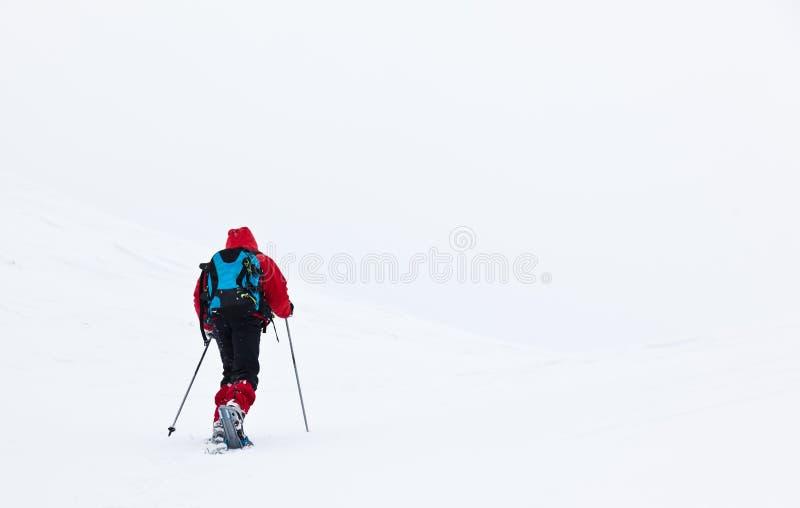 在山的男孩远足与雪靴 库存照片