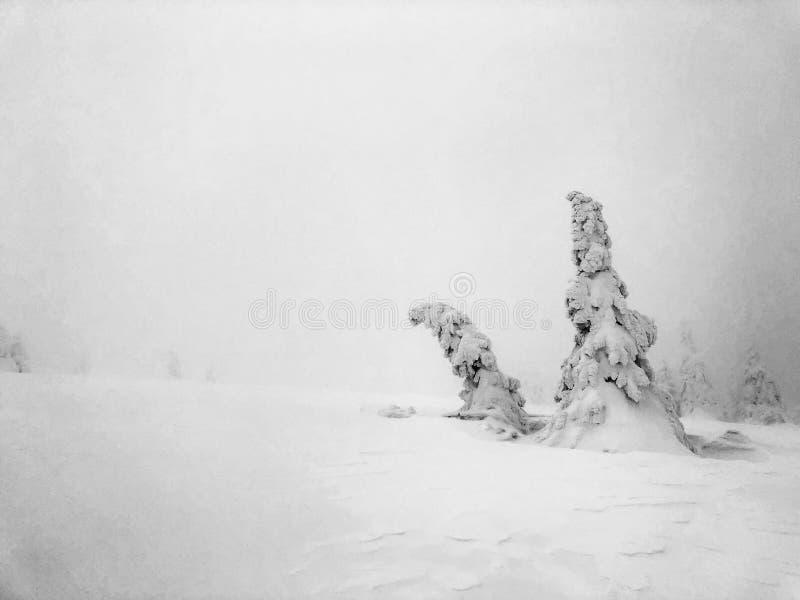 在山的白色黑暗 库存照片