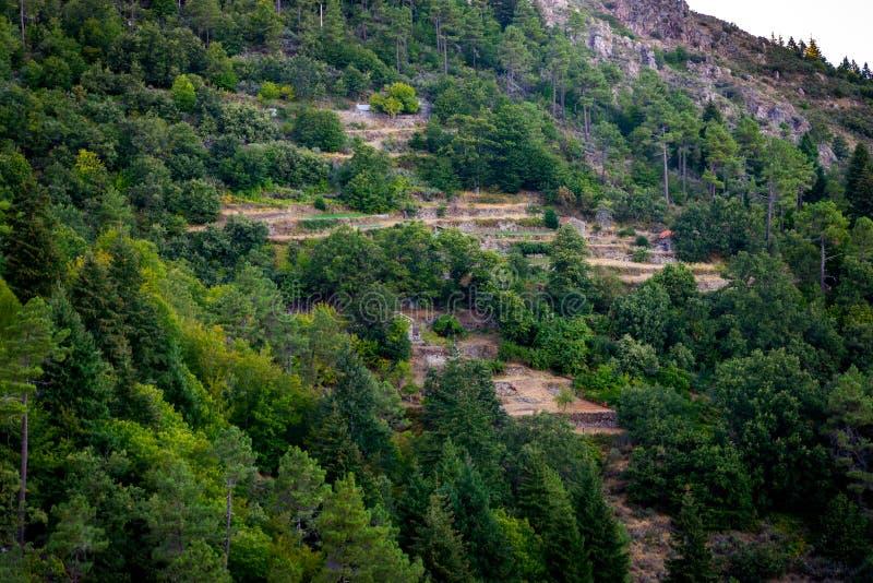 在山的石大阳台与两个房子和森林 免版税库存图片