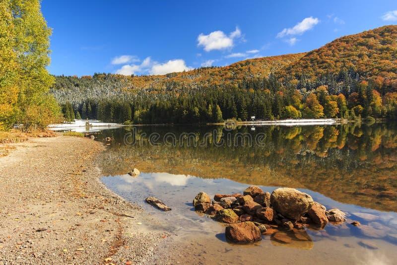 在山的秋天风景,圣徒Ana湖,特兰西瓦尼亚, Ro 免版税库存图片
