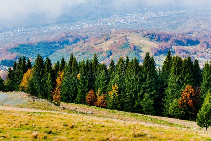 在山的秋天 免版税库存照片
