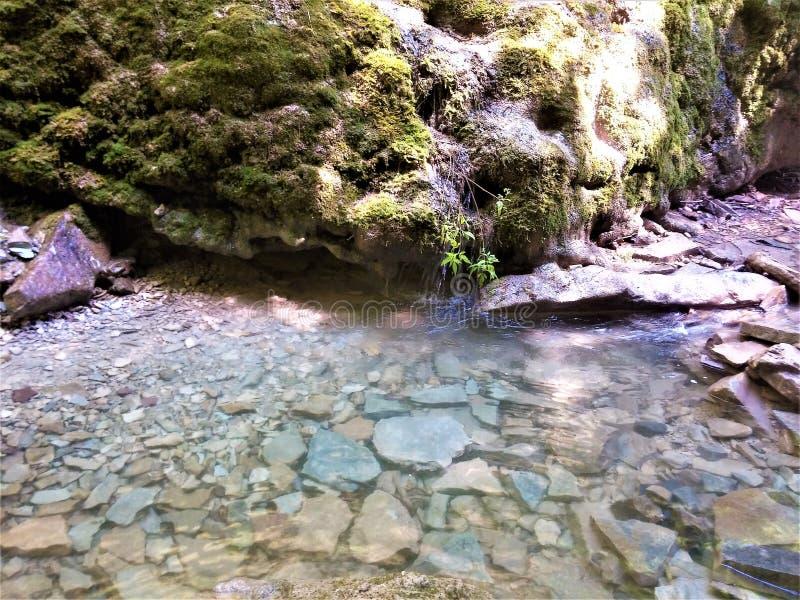 在山的美丽的水 免版税库存图片
