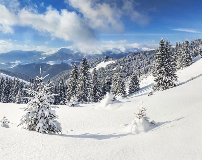 在山的美好的冬天风景 免版税图库摄影
