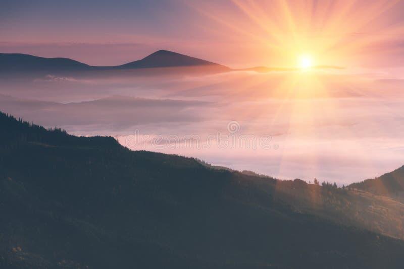 在山的美好的风景在日出 森林减速火箭的作用包括的有雾的小山的看法 旅行的概念backg 免版税库存图片