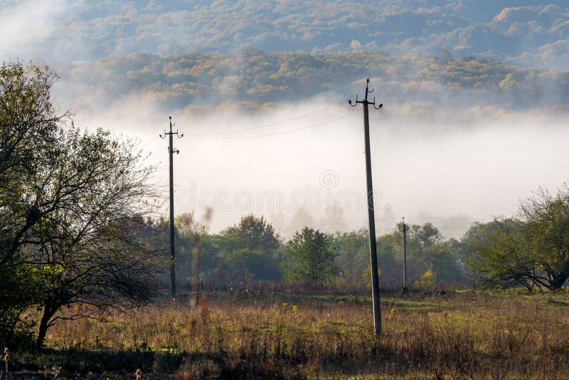 在山的美好的风景在日出 森林盖的有雾的小山看法  免版税库存照片