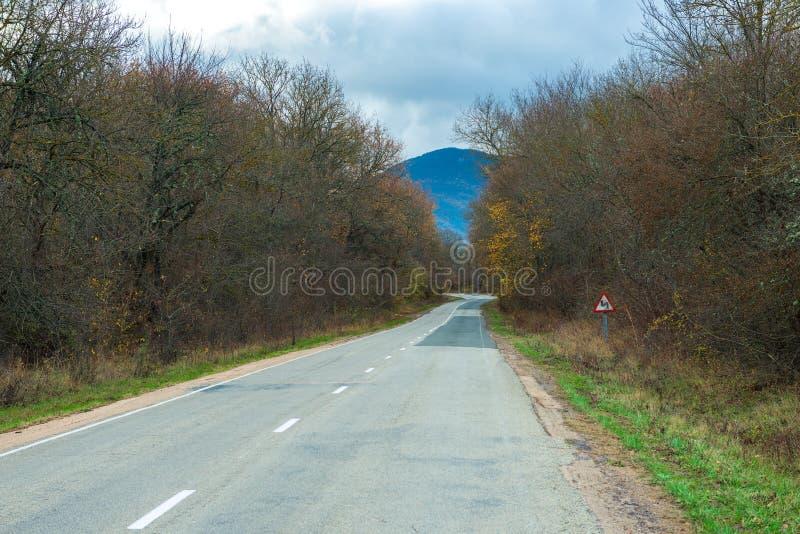 在山的路与弯 免版税库存照片