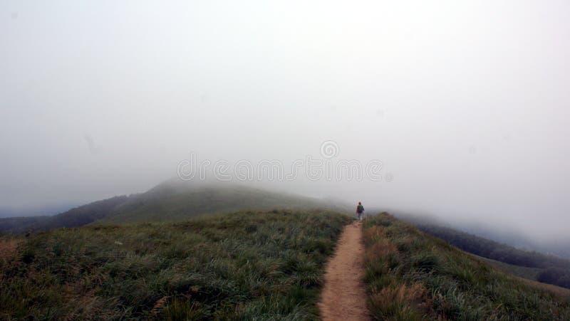 在山的雾 免版税图库摄影