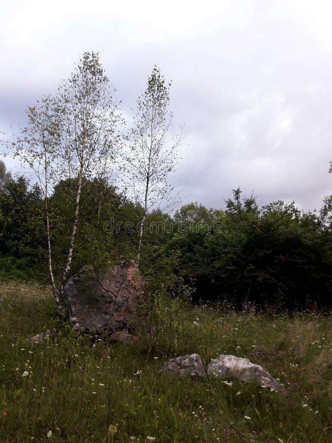 在山的风景夏天 库存照片