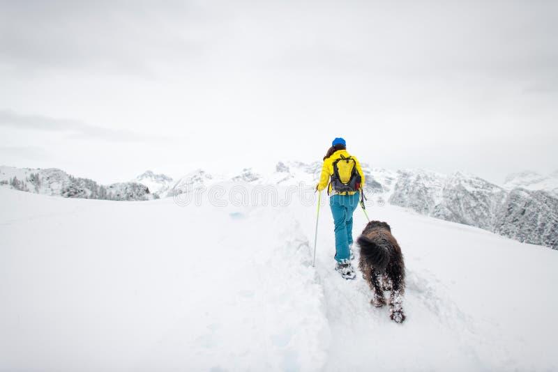 在山的Snowshoeing有她心爱的狗的一名单身妇女 免版税库存图片