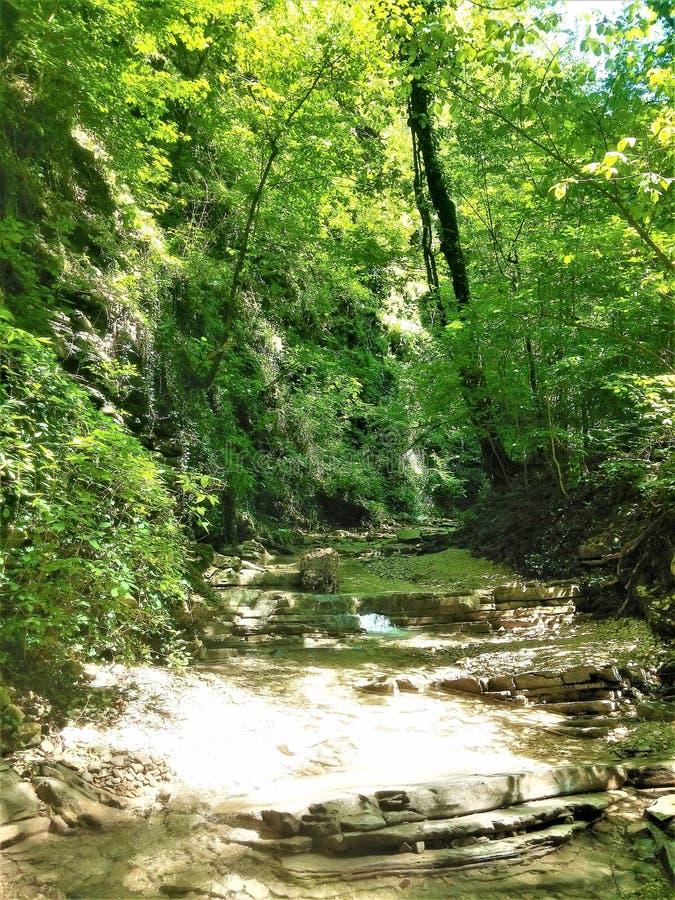 在山的Ursvy小河 免版税库存照片