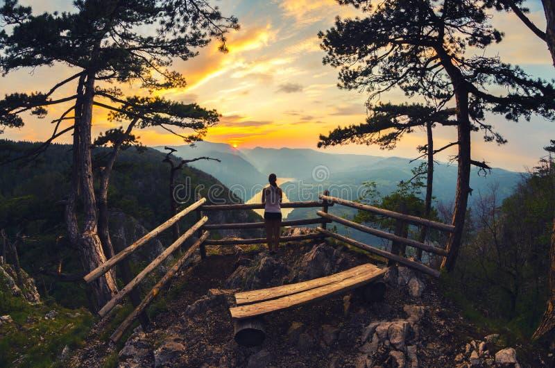 在山脉的十几岁的女孩观看的日出在夏天 免版税库存照片