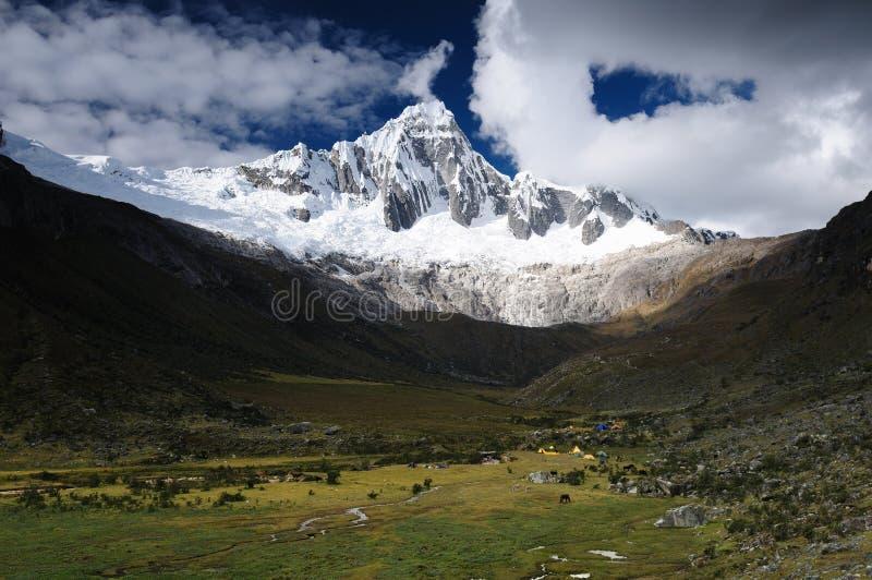 在山脉Blanca的秘鲁,圣克鲁斯牛拉车旅行 库存照片