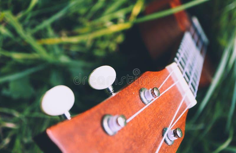 在山自然森林草的尤克里里琴吉他 照片描述 库存图片