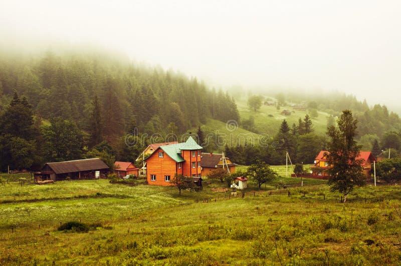 在山谷的早晨雾 图库摄影