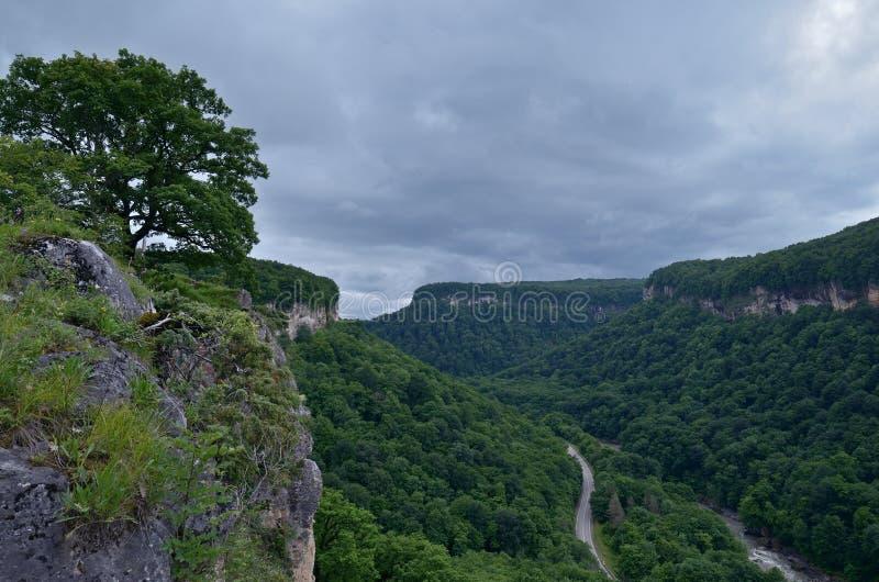 在山谷的美好的风景 夏天绿色叶子o 库存图片