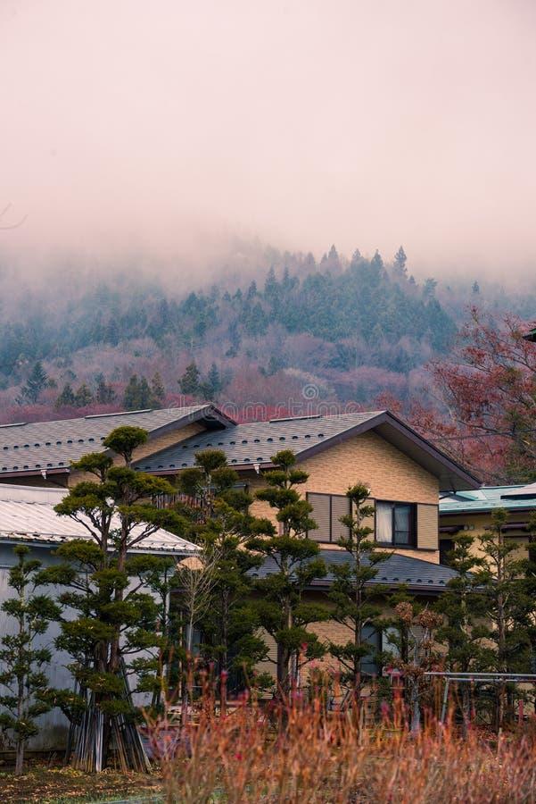 在山附近的日本房子 免版税库存照片