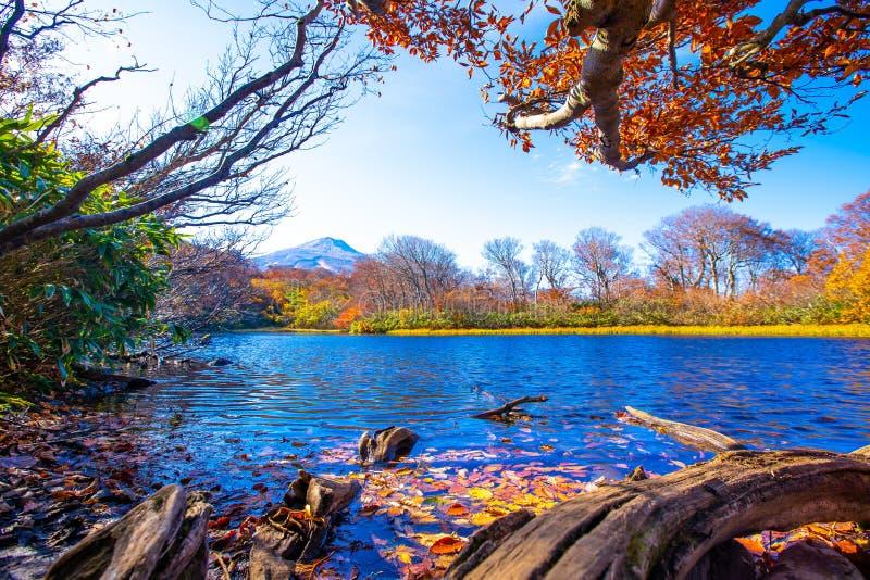 在山附近的水库用叶子填装了改变肤色 在有天空蔚蓝和白色云彩的秋天叶子在山形县日本 免版税库存照片