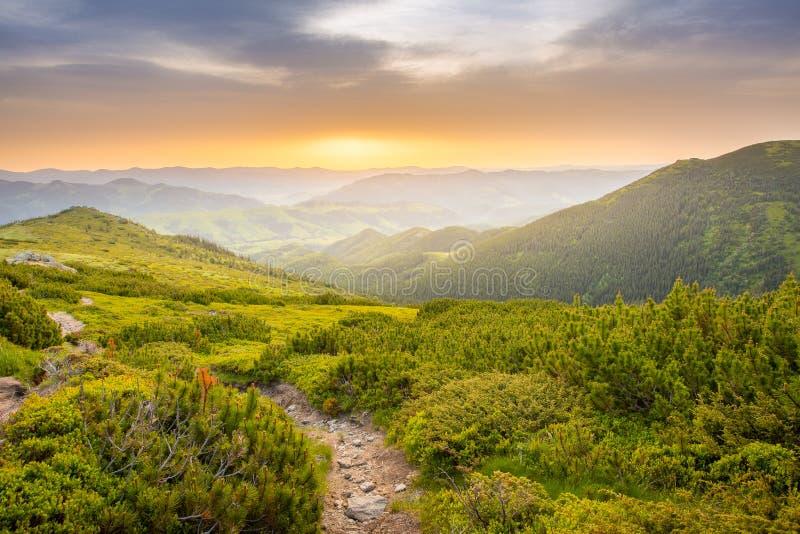 在山顶的夏天日出 山风景的巨大看法 免版税库存图片