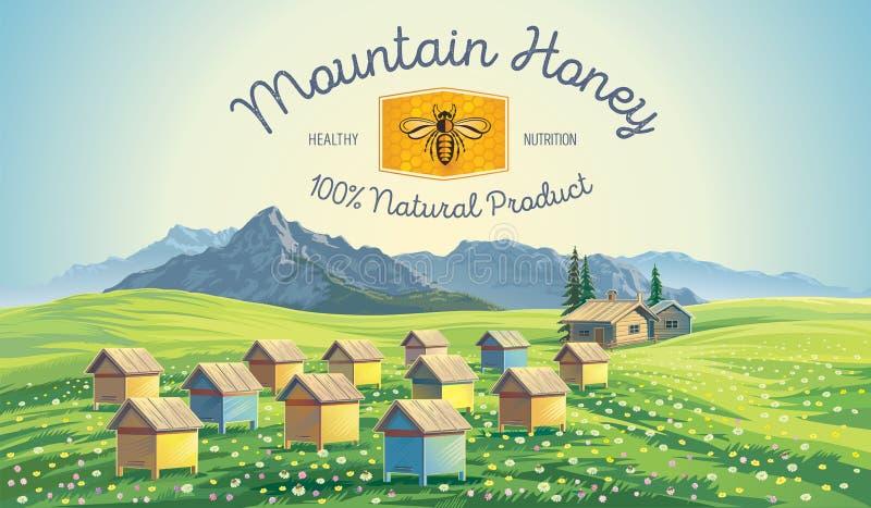 在山风景的蜂蜂房 库存例证