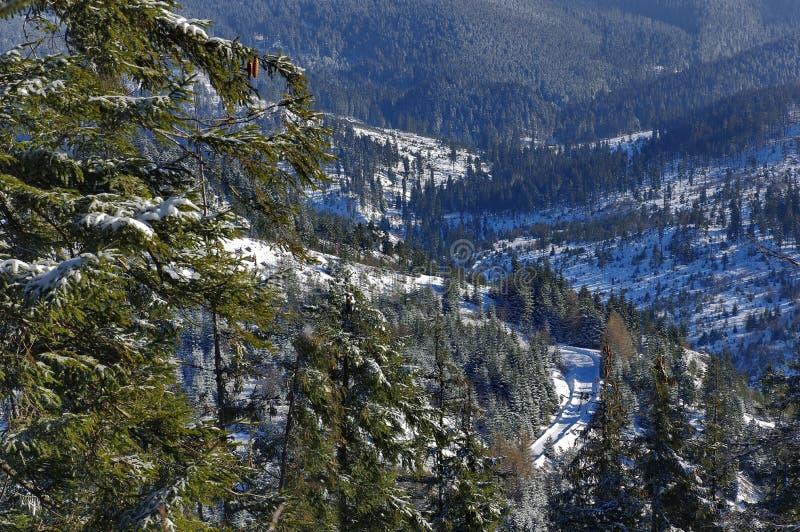 在山4的冬天风景 免版税库存照片