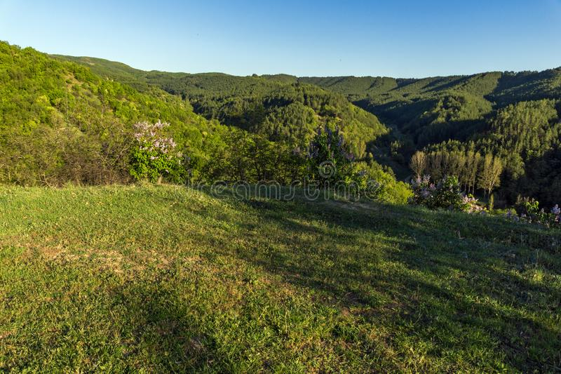 在岩层Stob金字塔附近的春天风景, Rila山,丘斯滕迪尔地区,保加利亚 免版税库存图片