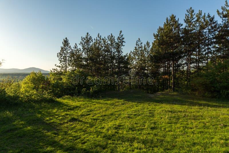 在岩层Stob金字塔附近的春天风景, Rila山,丘斯滕迪尔地区,保加利亚 库存照片