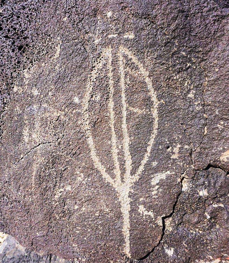 刻在岩石上的文字在刻在岩石上的文字国家历史文物公园在亚伯科基,新墨西哥 库存照片