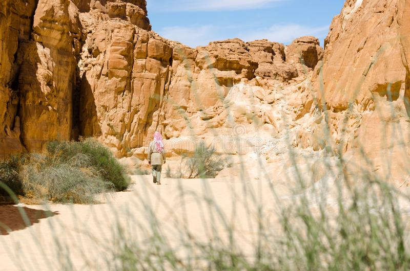 在岩石中的流浪的步行在一个沙漠峡谷在埃及宰海卜南西奈 免版税库存照片