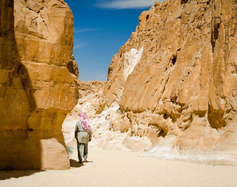 在岩石中的流浪的步行在一个沙漠峡谷在埃及宰海卜南西奈 免版税库存图片