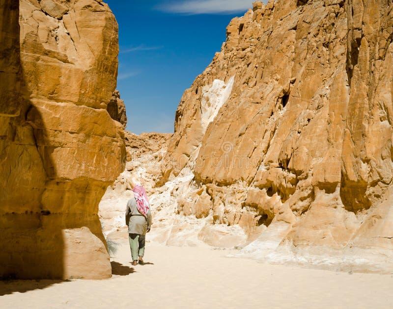 在岩石中的流浪的步行在一个沙漠峡谷在埃及宰海卜南西奈 库存照片