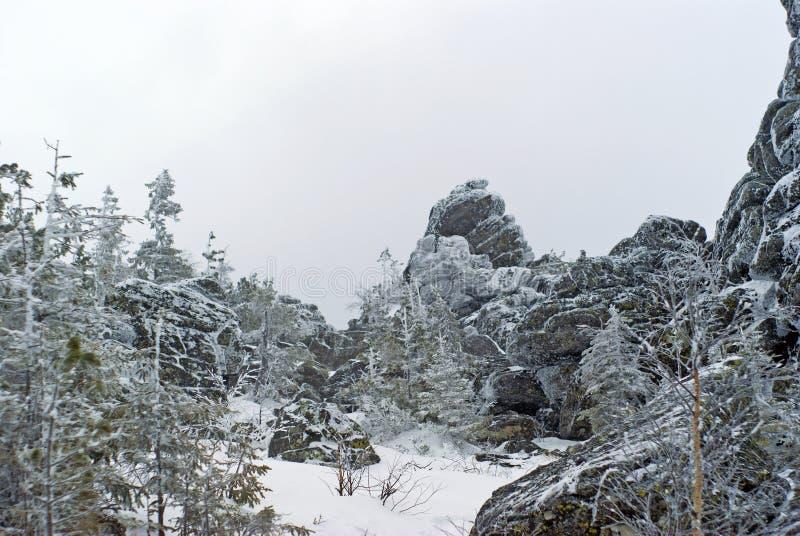 在岩石之间的一块沼地在山顶部在一个多云冬日 库存图片