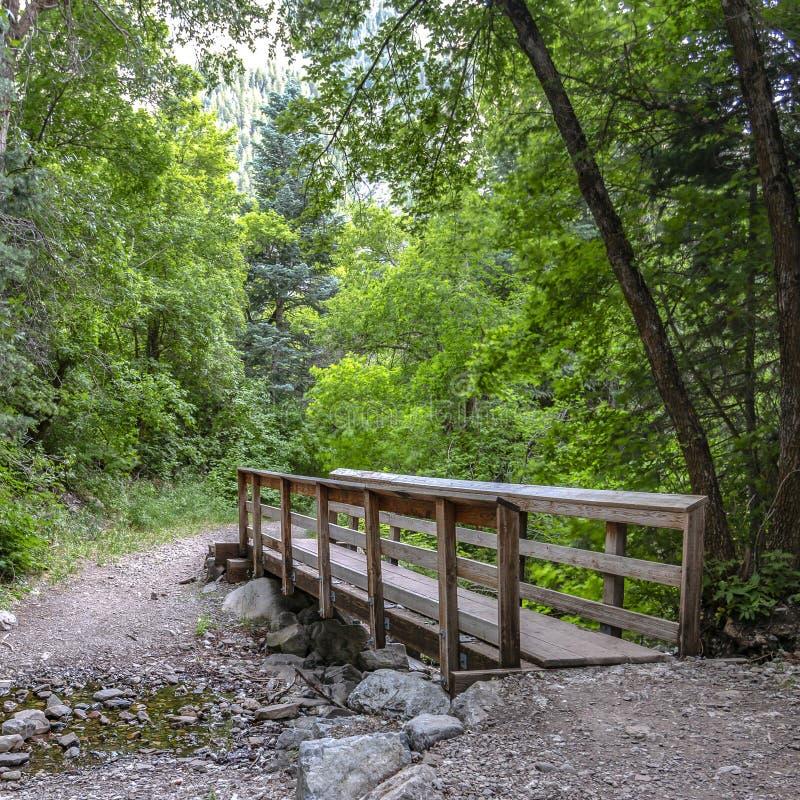 在岩石小河顶部的木桥与叶子 免版税图库摄影