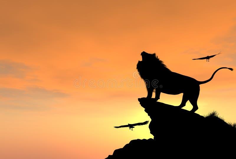 在岩石峭壁的骄傲的公狮子在日落 免版税库存图片