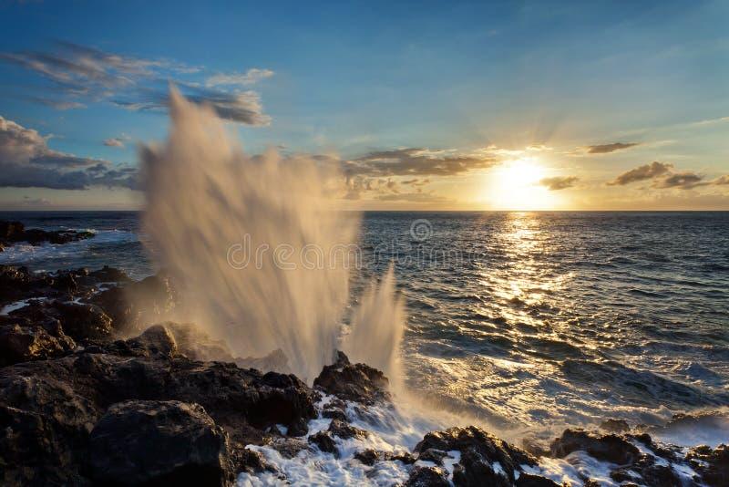 在岩石海岸线的通风孔 库存图片