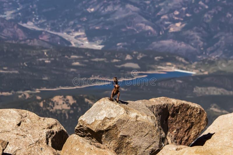 在岩石的咆哮恐龙在与深谷的在远的距离弄脏的山和湖顶部 免版税库存照片