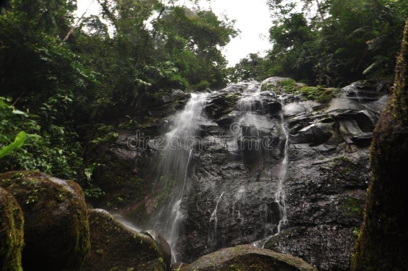 在岩石的水流量直立的东西 免版税图库摄影