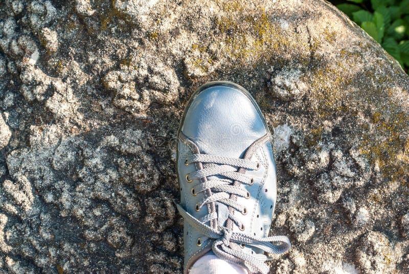 在岩石的脚 免版税库存照片