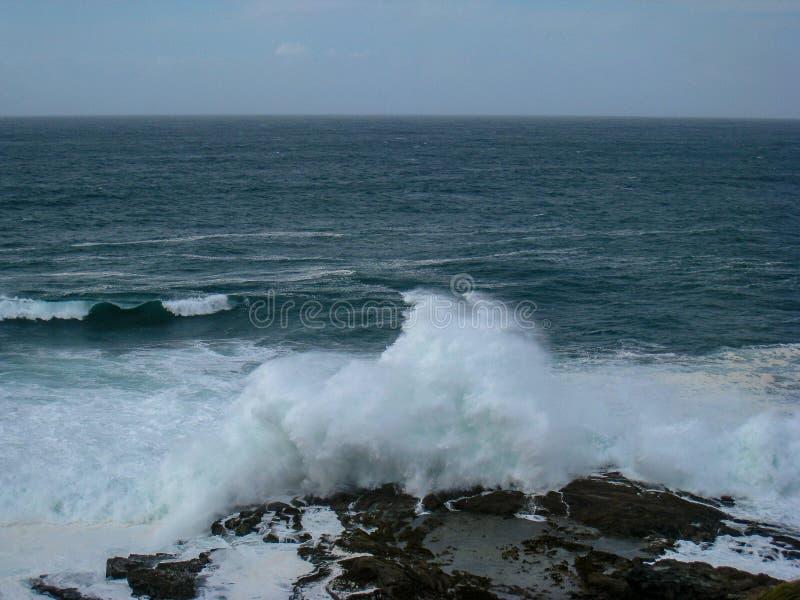 在岩石,大西洋海滨,爱尔兰的撒盐器 库存图片