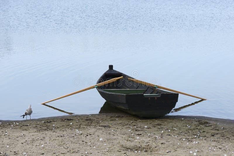 在岸和海鸥的木小船 库存图片