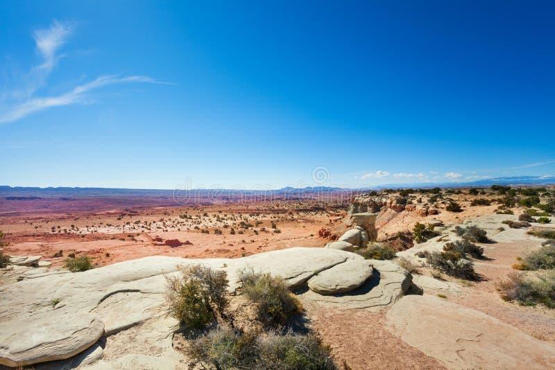 在峡谷地国家公园附近的扔石头的沙漠视图 免版税图库摄影
