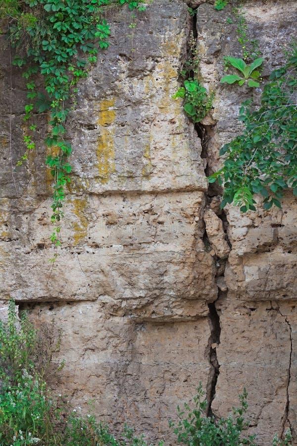 在峡谷屏障的裂缝 免版税库存图片