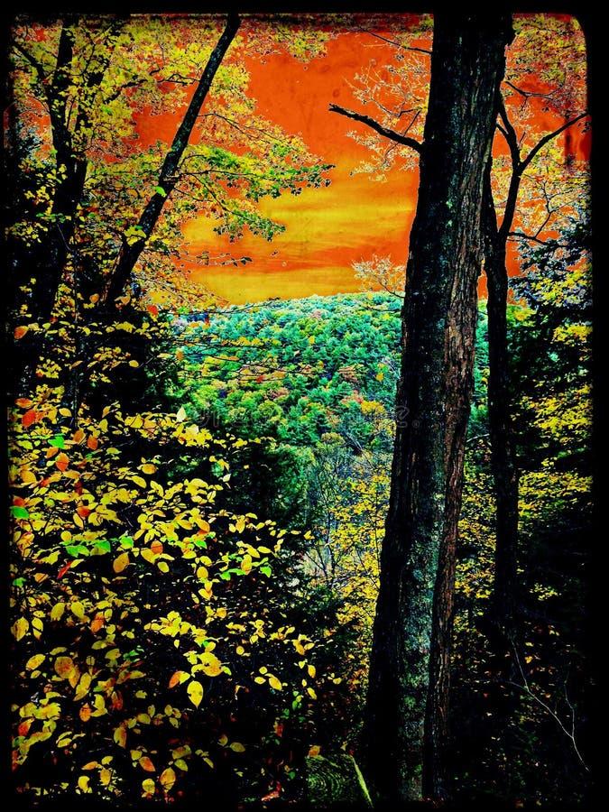 在峡谷的扭转的秋天天 图库摄影