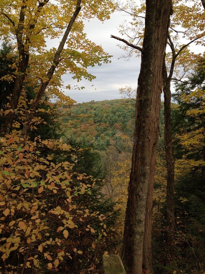 在峡谷的秋天天 免版税图库摄影